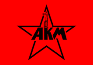 Vanguard of Red Youth - AKM banner