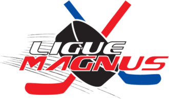 Ligue Magnus - 2004-13 logo