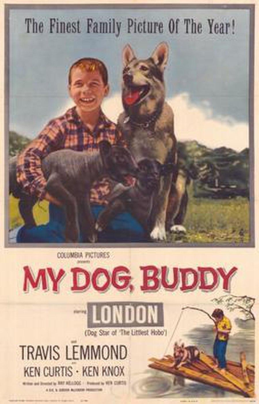 My Dog, Buddy