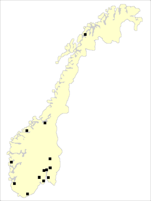 Norwegian Premier League 2006.PNG