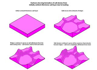 Salt tectonics study of salt-controlled structures (like salt domes), mechanisms, and tectonic deformation involving salt or other evaporates
