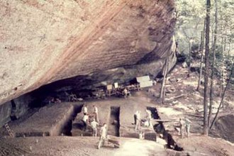 Stanfield-Worley Bluff Shelter - Image: Stanfield Worley Rock Shelter Overview