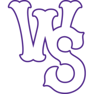 Winston-Salem Dash - Image: Winston Salem Dash
