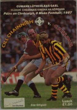 1987 All-Ireland Senior Hurling Championship Final programme.jpg
