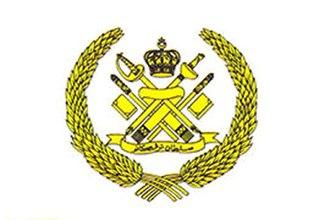 Mizan Zainal Abidin of Terengganu - Image: Bendera Sultan Terengganu
