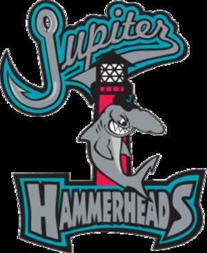 Jupiter Hammerheads - Image: Jupiter Hammerheads Logo