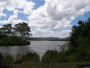 Kruger National Park - Luvuvhu and Limpopo rivers at Crookes Corner in Pafuri triangle