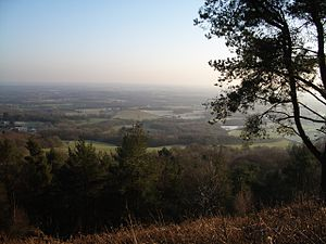 Leith Hill - Image: Leith hill 07