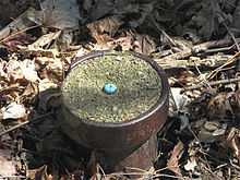 A photo of a survey mark.