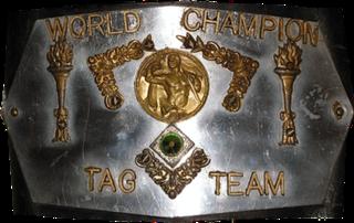 NWA World Tag Team Championship <i>(Detroit version)</i> Professional wrestling tag team championship