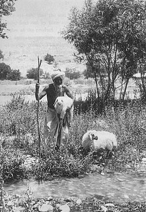 A Baloch shepherd, from a 1900 photo