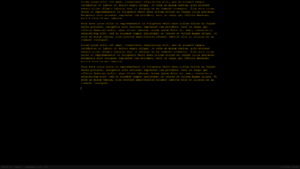 Screenshot of the Q10 text editor containing lorem ipsum text.png