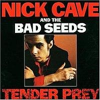 Tender Prey cover