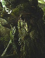 Treebeard in Peter Jackson's The Lord of the Rings films, voiced by John Rhys-Davies.