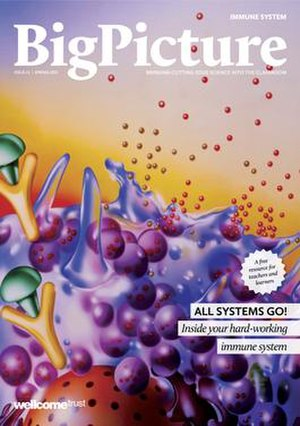 Big Picture (magazine) - Image: Big Picture 21 Immune System cover