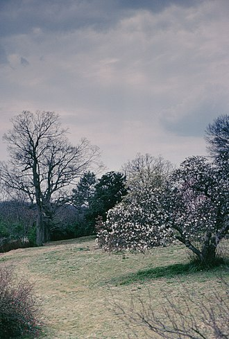 Maymont - Image: Maymont Park in the winter