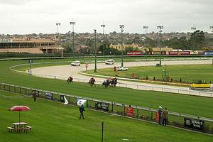Moonee Valley Racecourse - A horse race underway
