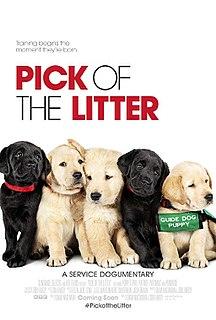 "<i>Pick of the Litter</i> (film) 2018 American film directed by Dana NachmanDon Hardy ""`UNIQ--ref-00000002-QINU`"""