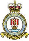 RAF Saxa Vord badge