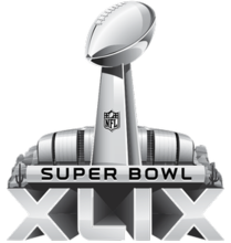 Image result for super bowl 2015
