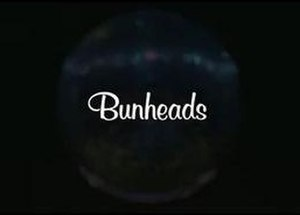 Bunheads - Image: This is the logo for the show, Bunheads