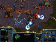 A Zerg colony shown from StarCraft's overhead perspective