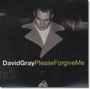 Please Forgive Me (David Gray song) - Image: David Gray Please Forgive Me US promo single