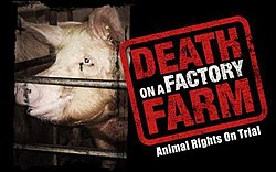 Death on a Factory Farm.jpg