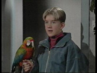 Harry's Mad - Harry Holdsworth and Madison (real parrot).