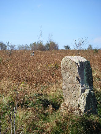 Gray Hill, Monmouthshire - Two of the standing stones on Gray Hill