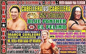 Sin Piedad (2011) - Poster for the 2011 Sin Piedad event