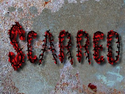 Picture of a TV show: Scarred