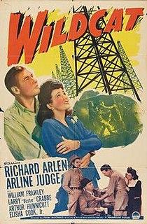 <i>Wildcat</i> (film) 1942 film by Frank McDonald
