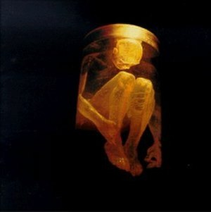 Nothing Safe: Best of the Box - Image: Alice In Chains Nothing Safe