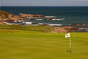 Crail Golfing Society - 14th green, Craighead Links