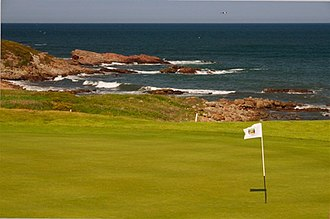 Crail Golfing Society - 14th green, Craighead Links