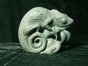 Don Everhart - Chameleon Medal, Don Everhart