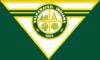 Flag of Valparaiso