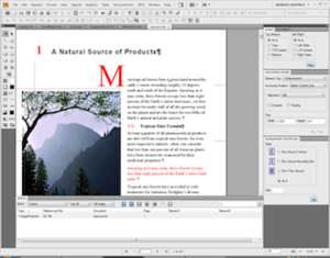 FrameMaker 9, editing a document in Structured Mode on Windows Vista.