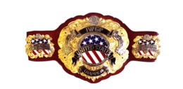 IWGP United States Championship.PNG