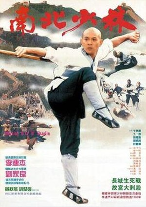 Martial Arts of Shaolin - Original Hong Kong film poster