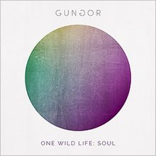 One Wild Life - Soul by Gungor.jpg