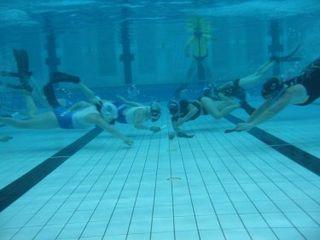 Underwater hockey in Australia History and organisation of the sport