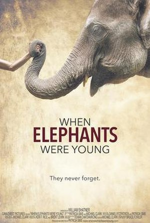 When Elephants Were Young - Official festival release poster