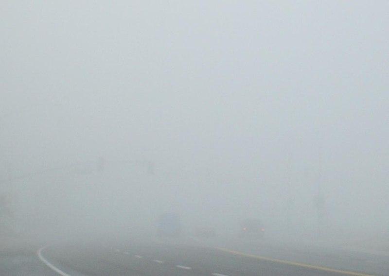 File:Dense Tule fog in Bakersfield,  California.jpg
