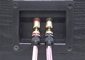 Banana connector - Loudspeaker-style banana plugs connected to a loudspeaker