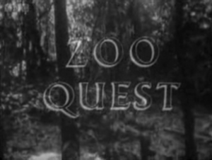 Zoo Quest - Series title card from Zoo Quest for a Dragon