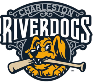 Charleston RiverDogs - Image: Charleston River Dogs
