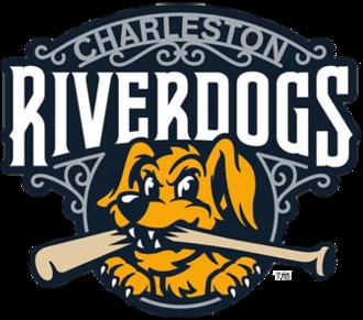 Charleston RiverDogs - Image: Charleston River Dogs