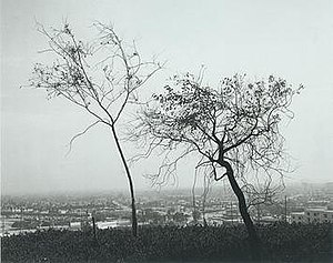 Robert Adams (photographer) - Adams' On Signal Hill, Overlooking Long Beach, 1983, gelatin-silver print, 9 x 11 inches